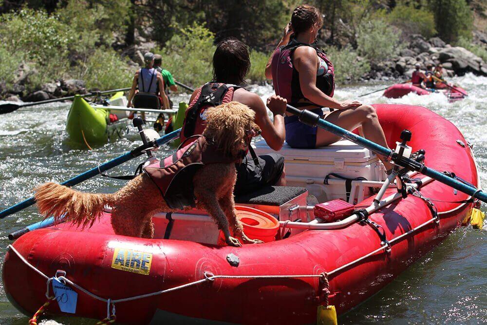Rafting Essentials
